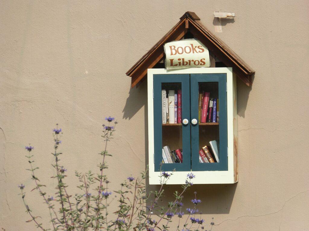 Come scegliere un libro da leggere dagli scaffali di questa graziosa teca?